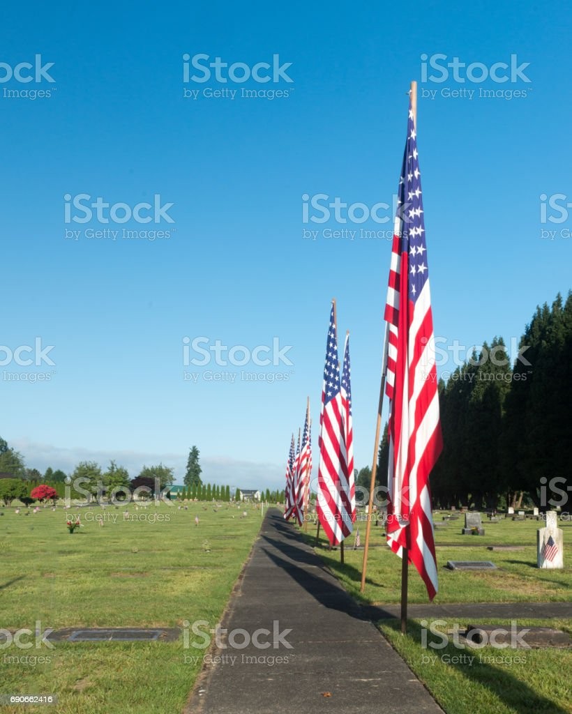 Row of American flags at cemetery stock photo