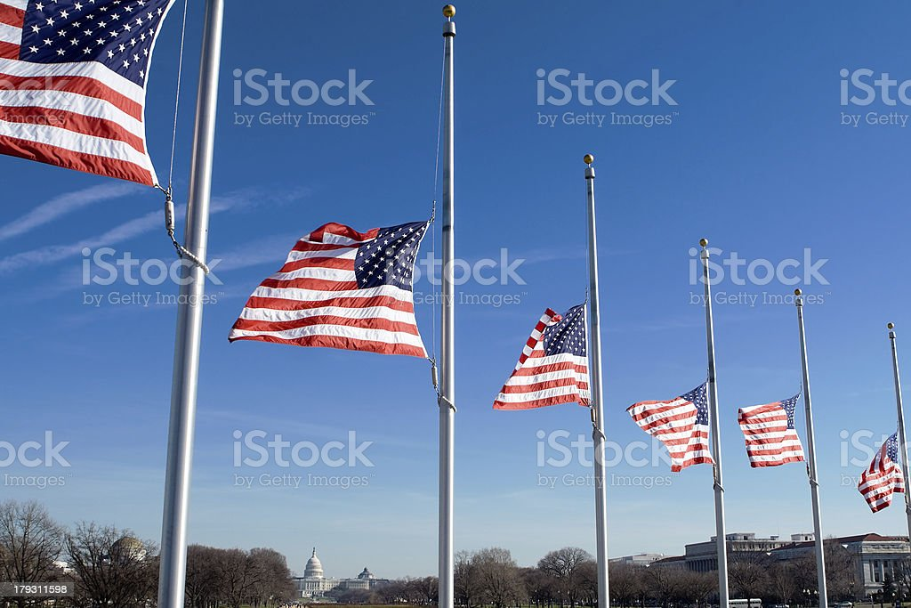 Row of American Flags at Half Mast, Washington, DC, USA stock photo