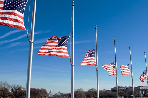 Row of American Flags at Half Mast, Washington, DC, USA stock photo