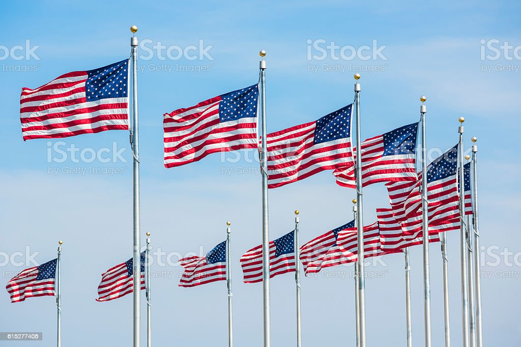 Row of American Flags in Washington D.C. by monument stock photo