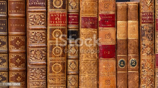 Row of ancient books with typical 18th century leather bindings. French language