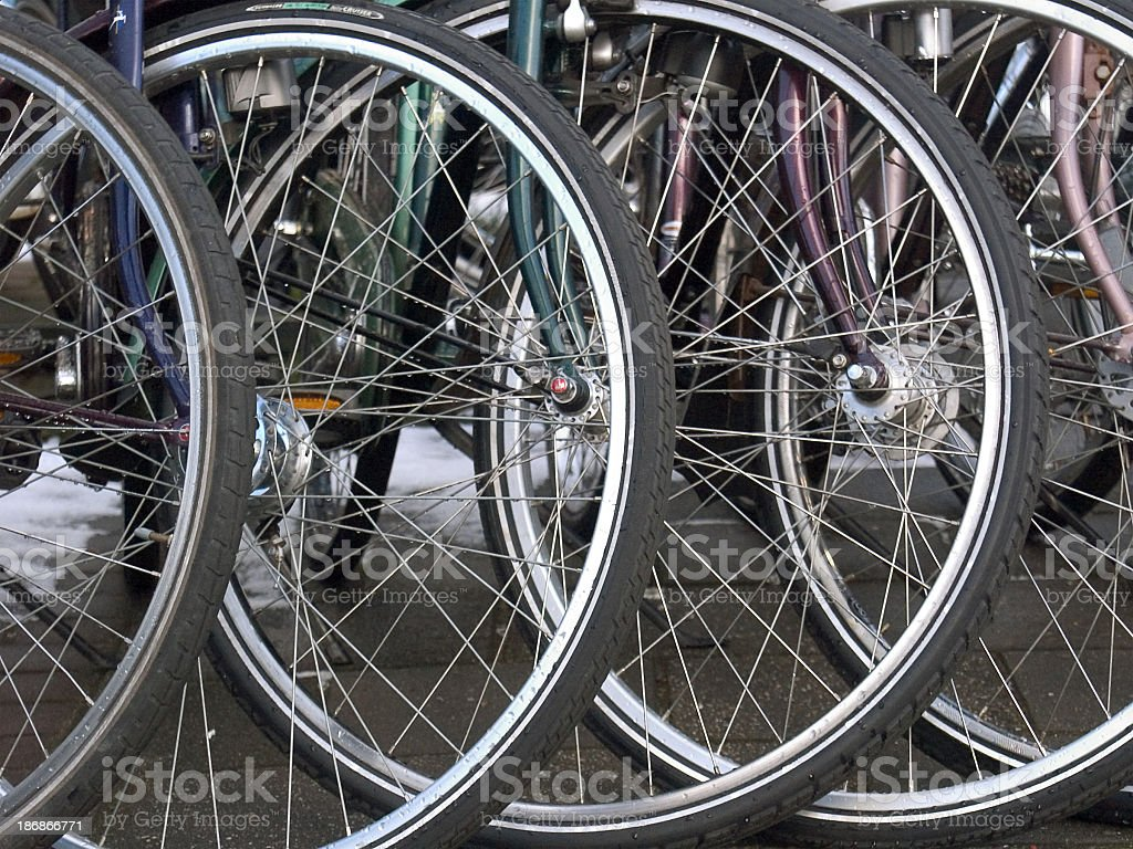 Row of bicycle wheels stock photo