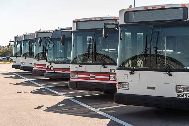 Fila de autobuses - foto de stock