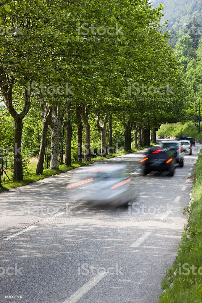Row of Cars Driving Along a Tree Lined Road royalty-free stock photo