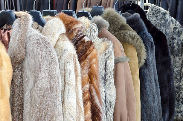 row of coats made of animal fur - 皮草 個照片及圖片檔