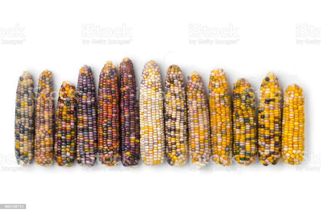 Row of colorful gem glass corn on cob royalty-free stock photo