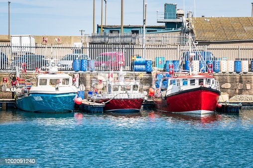 Colourful fishing boats moored to jetties in a harbour on a sunny spring day. Peterhead, Scotland, UK.