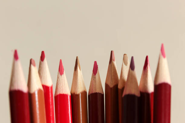 A row of colouring pencils stock photo