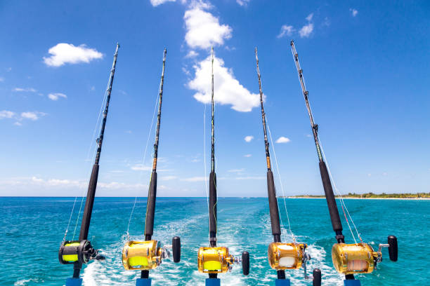 Row of Deep Sea Fishing Rods on Boat Row of five fishing reel stock pictures, royalty-free photos & images