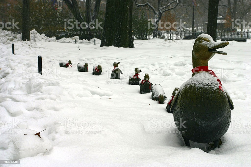 A row of duck statues in a snowy Boston park stock photo