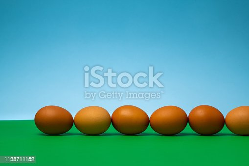 Row of brown eggs waiting to hatch on a green field with a blue sky background.