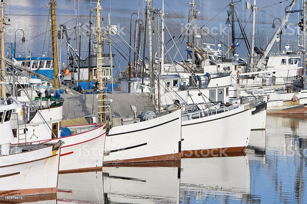 Row of Fishing Boats at Dock royalty-free stock photo