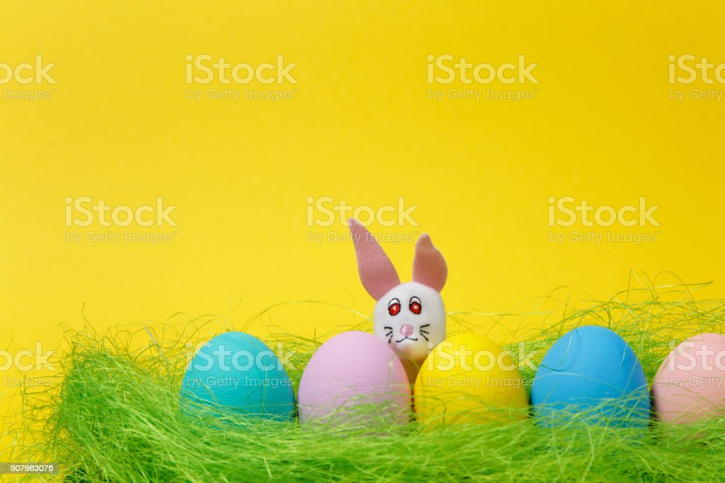 Row of five colorful pastel monophonic painted Easter eggs, white fun bunny in green dry grass on yellow background for card. Happy Easter concept. Copy space for advertisement. With place for text. stock photo