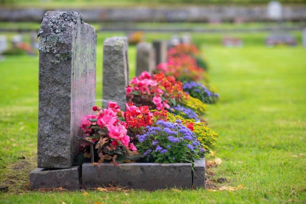 row of grave stones with beautiful and colorful flowers - cimitero foto e immagini stock
