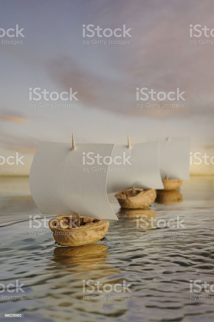 Row of nutshell boats . royalty-free stock photo