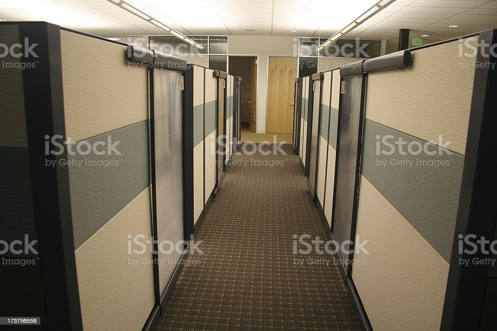 Narrow Perspective - Desolate Grey Row of Cubicles