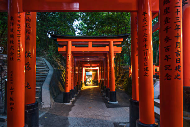 Row of orange torii gates at entrance of shrine Kyoto, Japan - May 28, 2016: Row of orange torii gates in Kyoto, Japan. They are traditional gates found at the entrance of shrine. Each torii gate is donated by a Japanese business. shinto shrine stock pictures, royalty-free photos & images