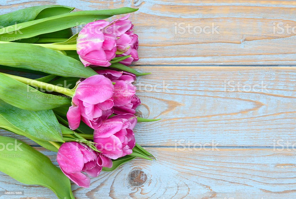 Row of pink tulips on old wood with empty space royalty-free stock photo
