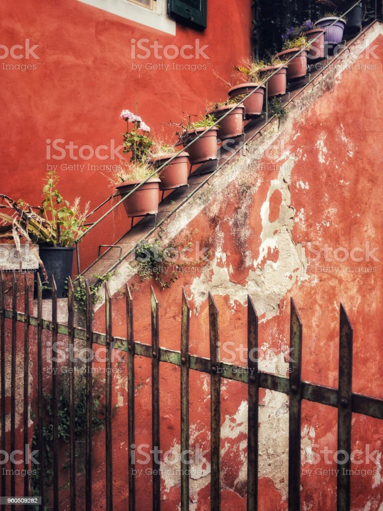 row of potted pants alonig the staircase stock photo