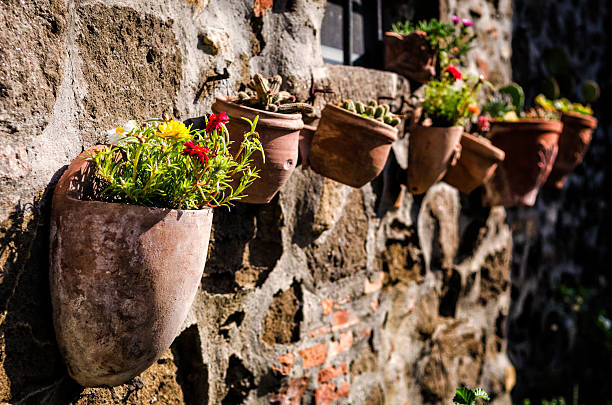 row of potted plants and flowers from Tuscany, Italy foto