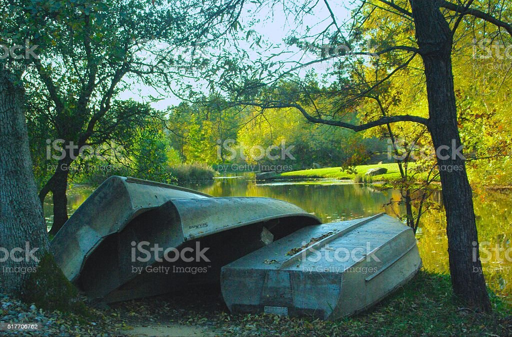 Row of Rowboats by the lake stock photo
