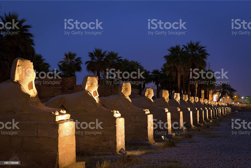 Row of Sphinx stock photo