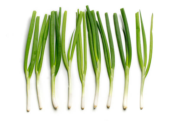 row of spring onions - bosui stockfoto's en -beelden