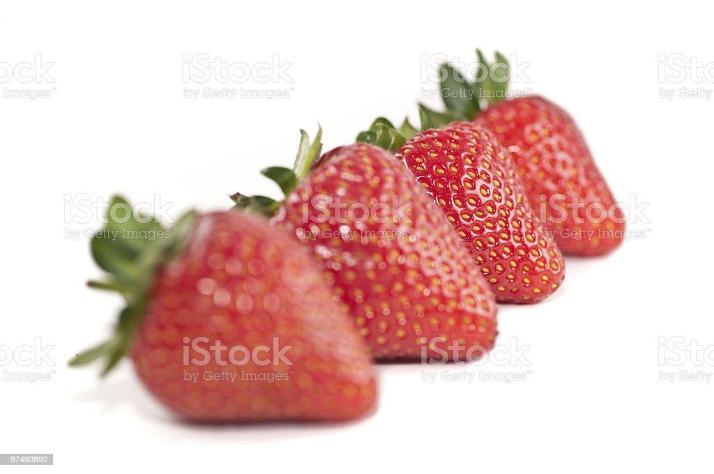 Row of strawberries royalty-free stock photo