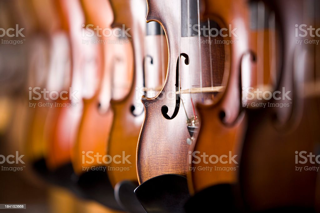 Row of violins on display rack stock photo