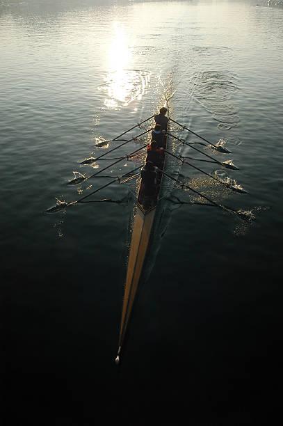 row stock photo