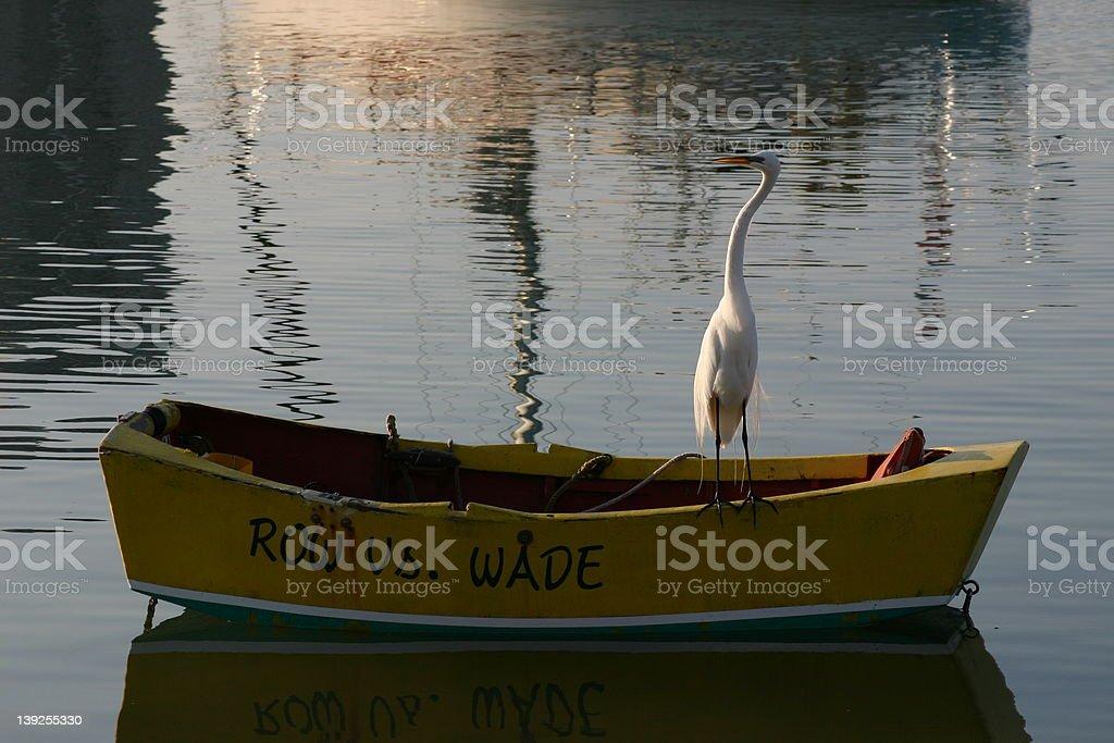 Row vs. Wade royalty-free stock photo
