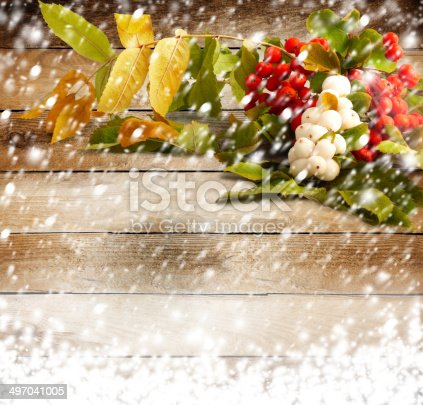 istock Rowan branch with berries on the snow-covered wooden background 497041005