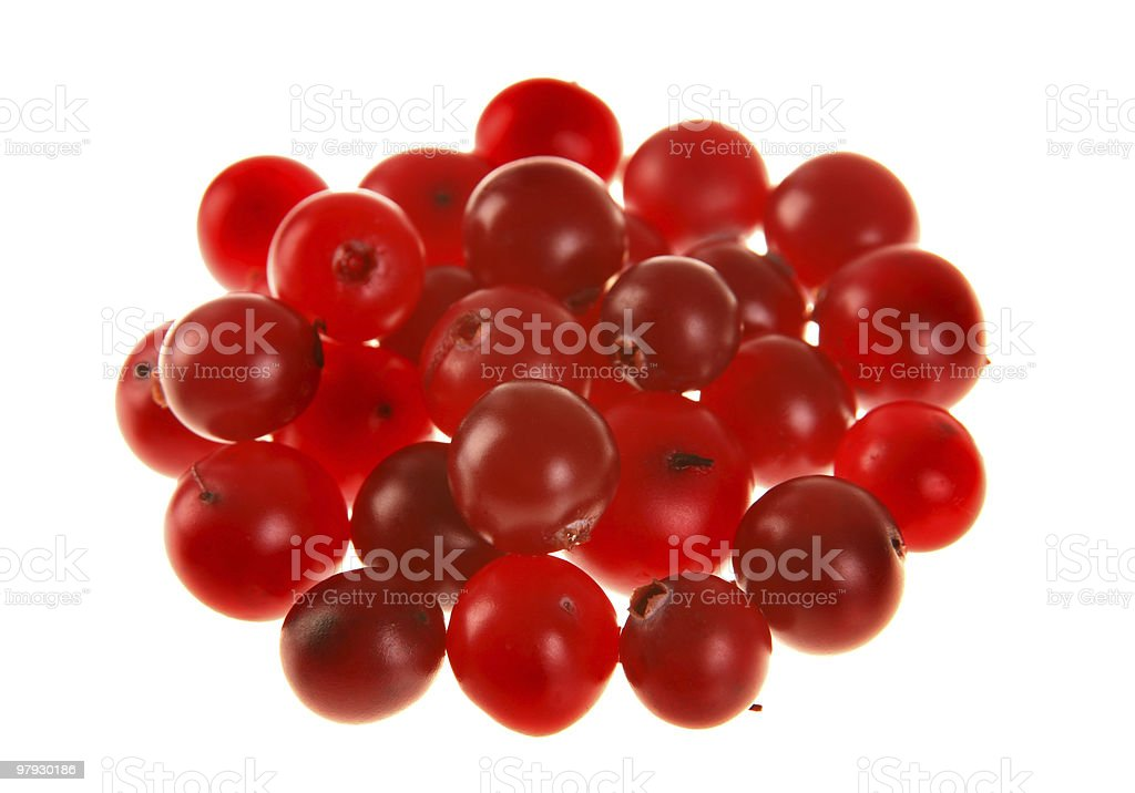 Rowanberry group royalty-free stock photo