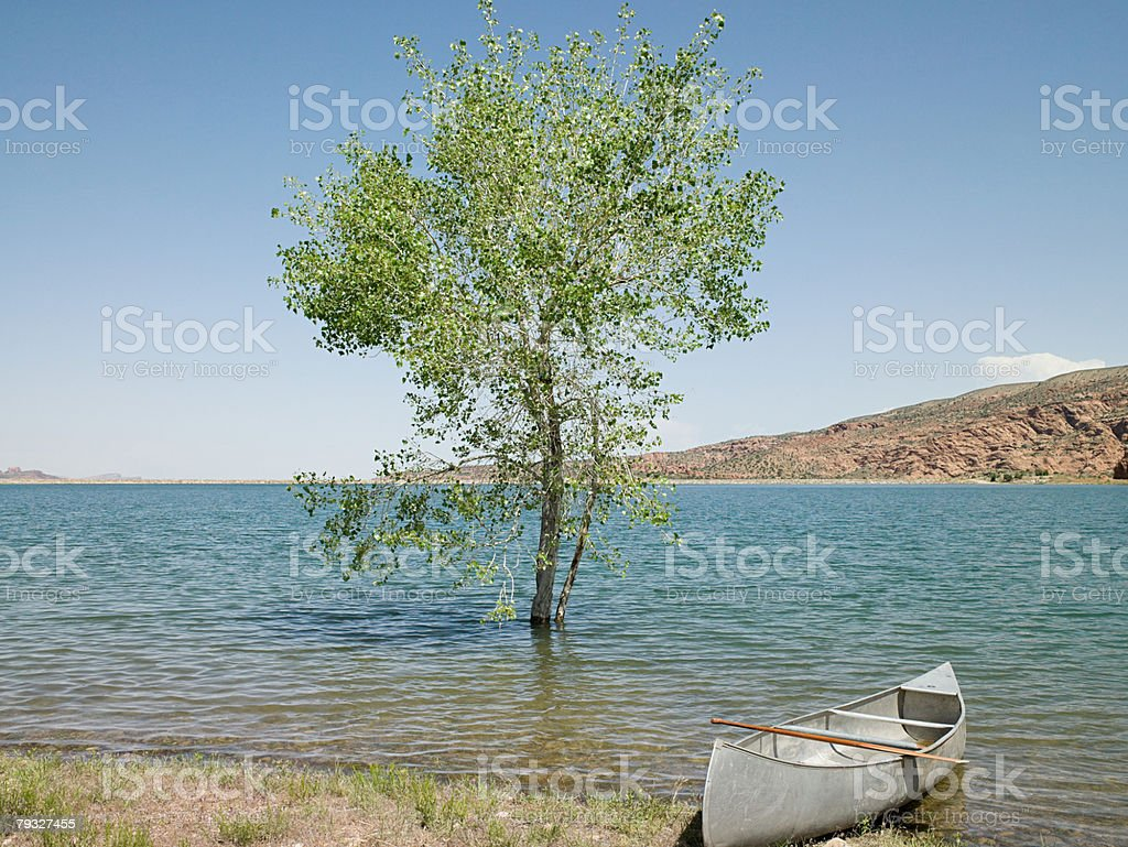 Rowboat at kens lake utah 免版稅 stock photo