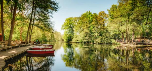 ruderboote auf der bühne am neuen see in berlin tiergarten - berlin mitte stock-fotos und bilder