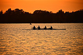 Silhouette of rowers on Connecticut's Bantam Lake at sunset, with gull flying by