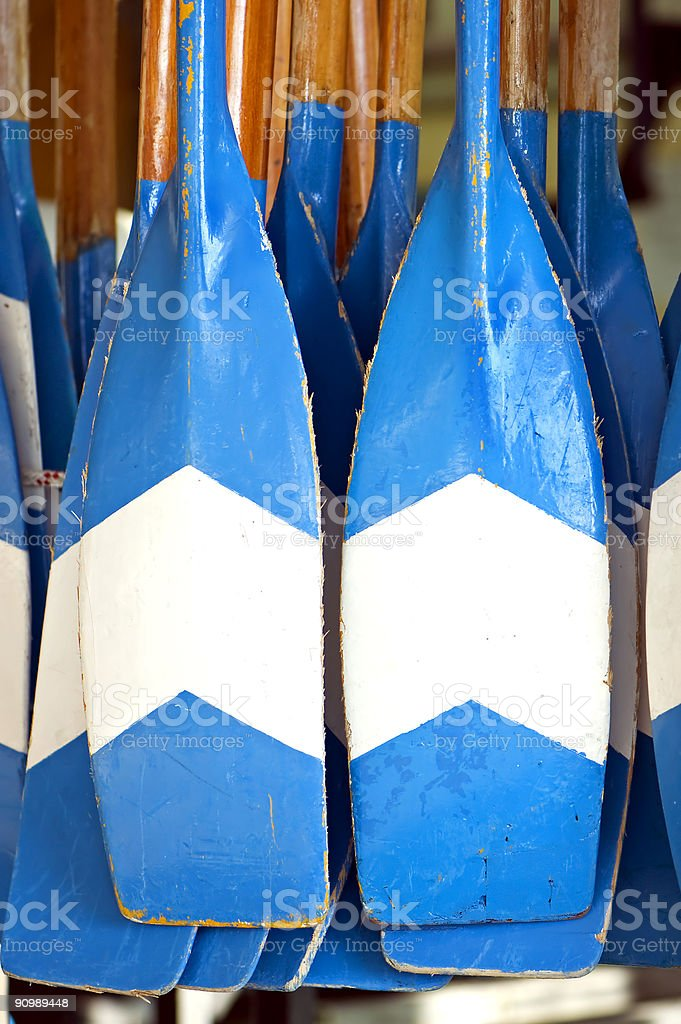 Rowers royalty-free stock photo
