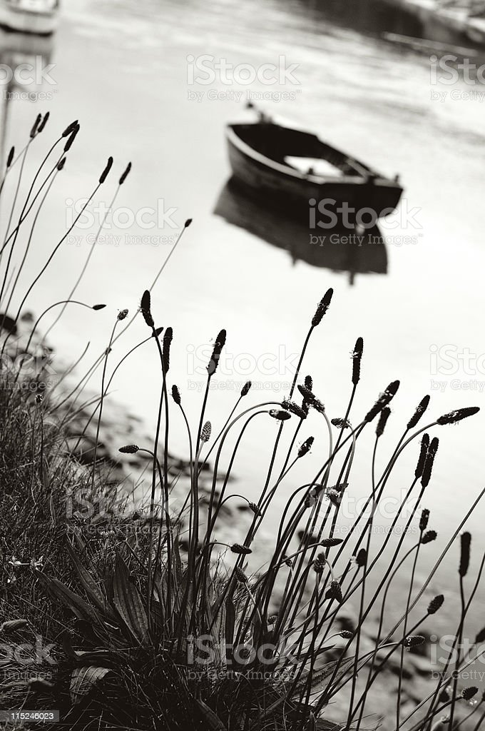 Rowing boat on river tamar, cornwall royalty-free stock photo