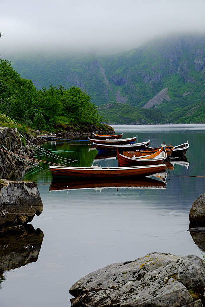 Rowing boats on a line stock photo