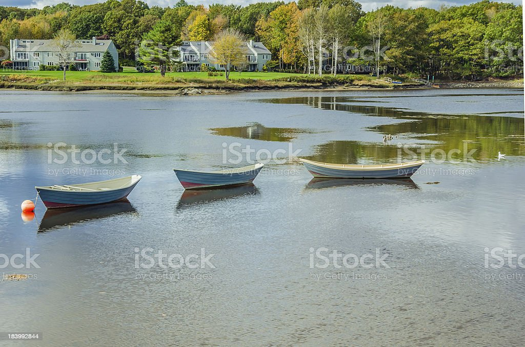 Rowing Boats on a River stock photo