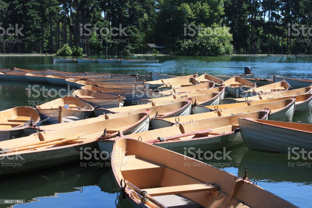 Rowing boats royalty-free stock photo