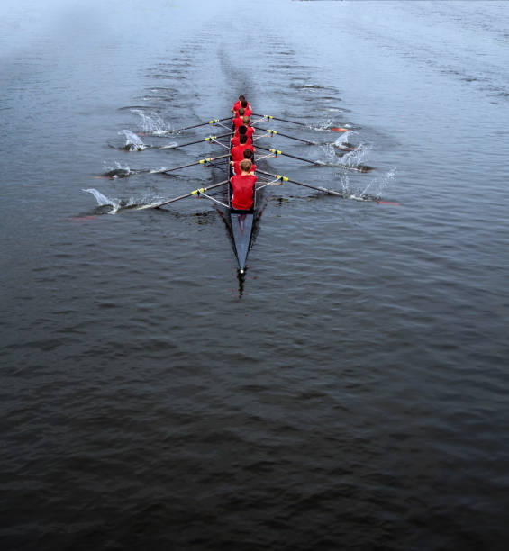 rowing eight man - sports team stock photos and pictures