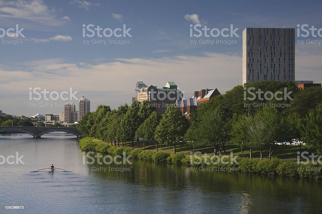 Rowing in Boston stock photo