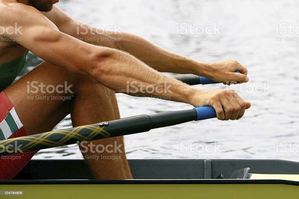 rowing men in training stock photo