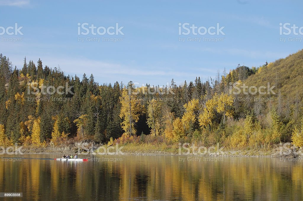 Rowing on the river royalty free stockfoto