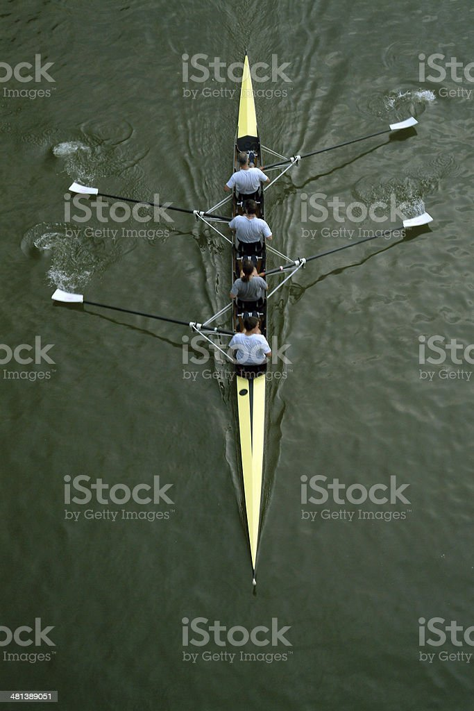 Rowing Series #1 royalty-free stock photo