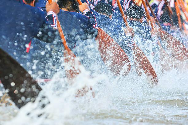 rowing team stock photo