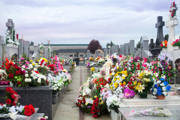 Rows of crosses and flowers in a graveyard. – Foto