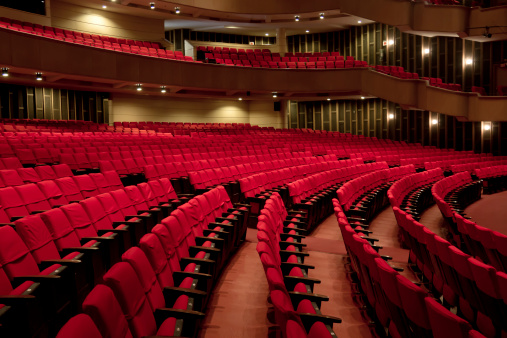 Rows of Empty Seats at a Theatre