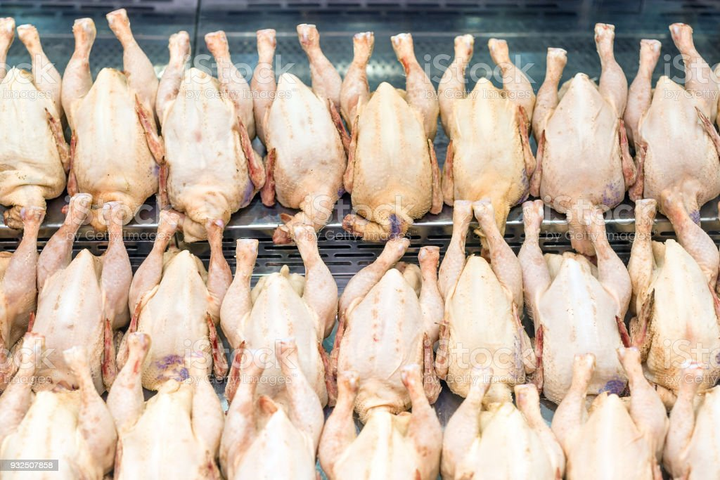 Rows of fresh raw chicken poultry at supermarket window-display. Poultry farm indystry. Livestock industry price index stock photo